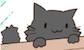 引越しモア看板猫クロニシキの画像