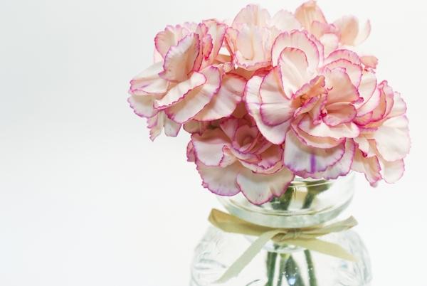 img_fusui_flower_26