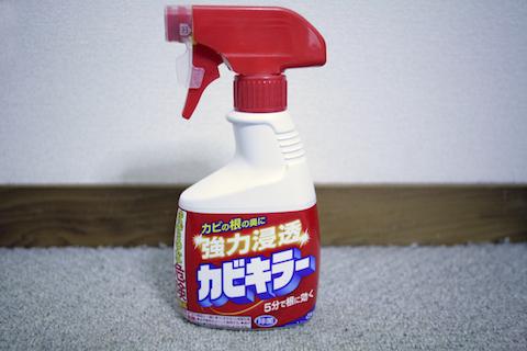 img_cleaning_kabi_04