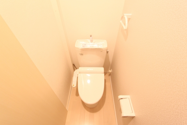 img_cleaning_toilet_51