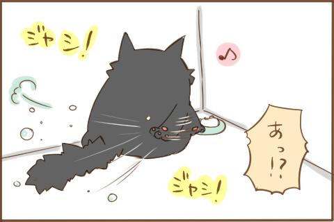img_kuronishiki_fusui_03