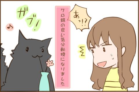 img_kuronishiki_fusui_04