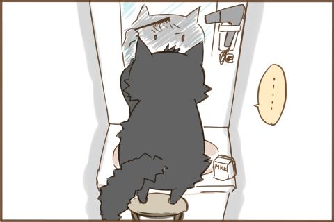 img_kuronishiki_ikemen_04