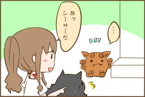 img_kuronishiki_sisa_02