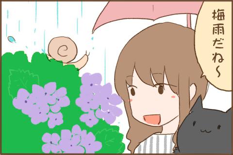 img_kuronishiki_tsuyu_01
