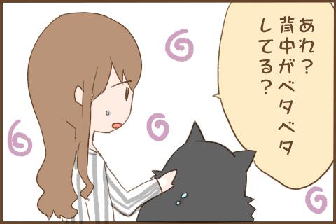 img_kuronishiki_tsuyu_03