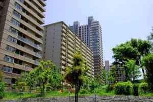 img_pregnant_apartment_74