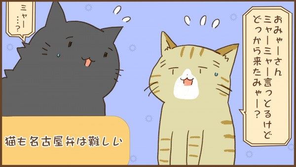 img_kuronishiki_nagoya_04