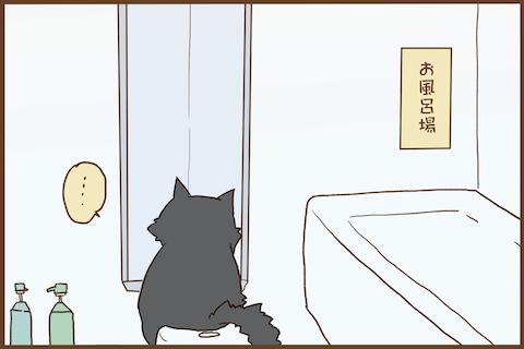 img_kuronishiki_wait_04