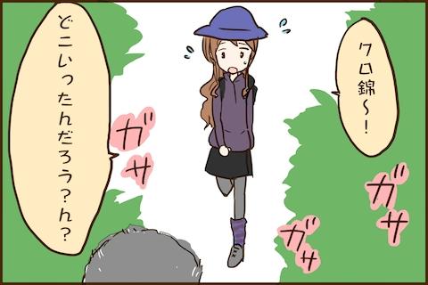 img_kuronishiki_higuma_02
