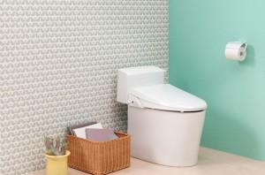 img_fusui_toilet90