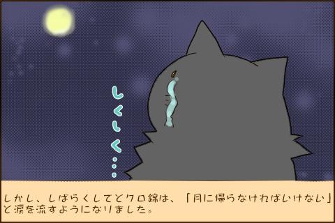 しかし、しばらくするとクロ錦は、「月に帰らなければいけない」と涙を流すようになりました。